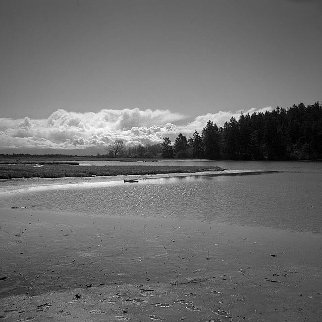 Witty's Lagoon, Metchosin, BC. (Camera: Agfa Isolette II; Film: Kodak Tri-X 400)